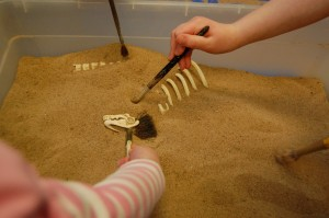Our junior paleontologists search for bones during the Dino-Mite birthday party.