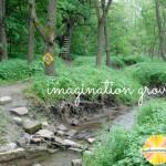 imagination grove