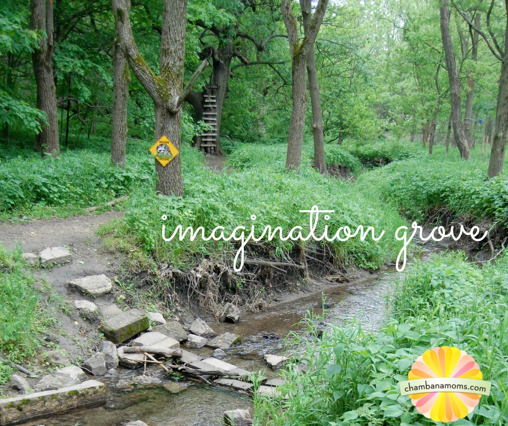 imagination grove
