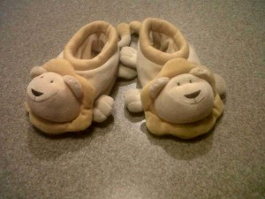 The lion slippers trish gulley