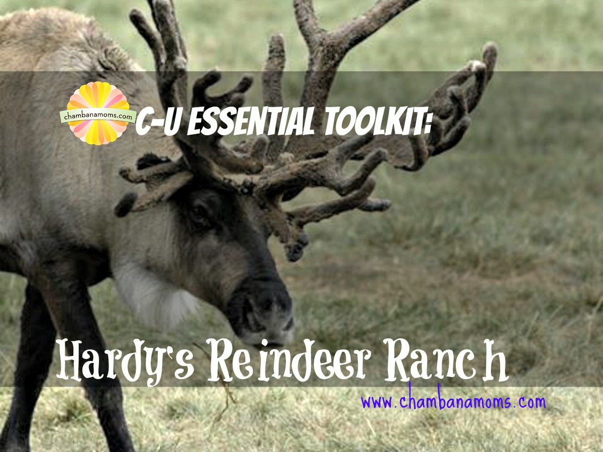 Hardy's Reindeer Ranch in Rantoul for fall family fun on chambanamoms.com