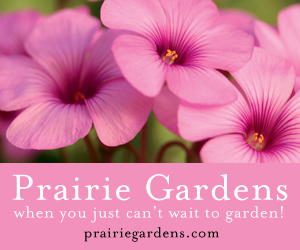 Prairie Gardens Champaign