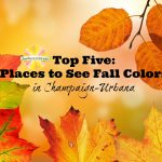 Top Five: Places to See Fall Colors in Champaign-Urbana