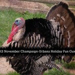 2013 November Champaign-Urbana Winter Holiday Fun Guide