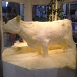 state fair butter cow