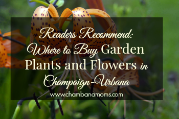 readers recommend where to buy garden plants and flowers in champaign-urbana on www.chambanamoms.com