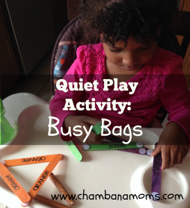 Quiet Play Activity for Toddler and Pre School Play:  Busy Bags on www.chambanamoms.com