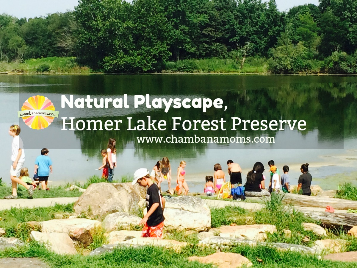 Get to Know the Homer Lake Natural Playscape, part of the Champaign Country Forest Preserve system in Champaign-Urbana on Chambanamoms.com