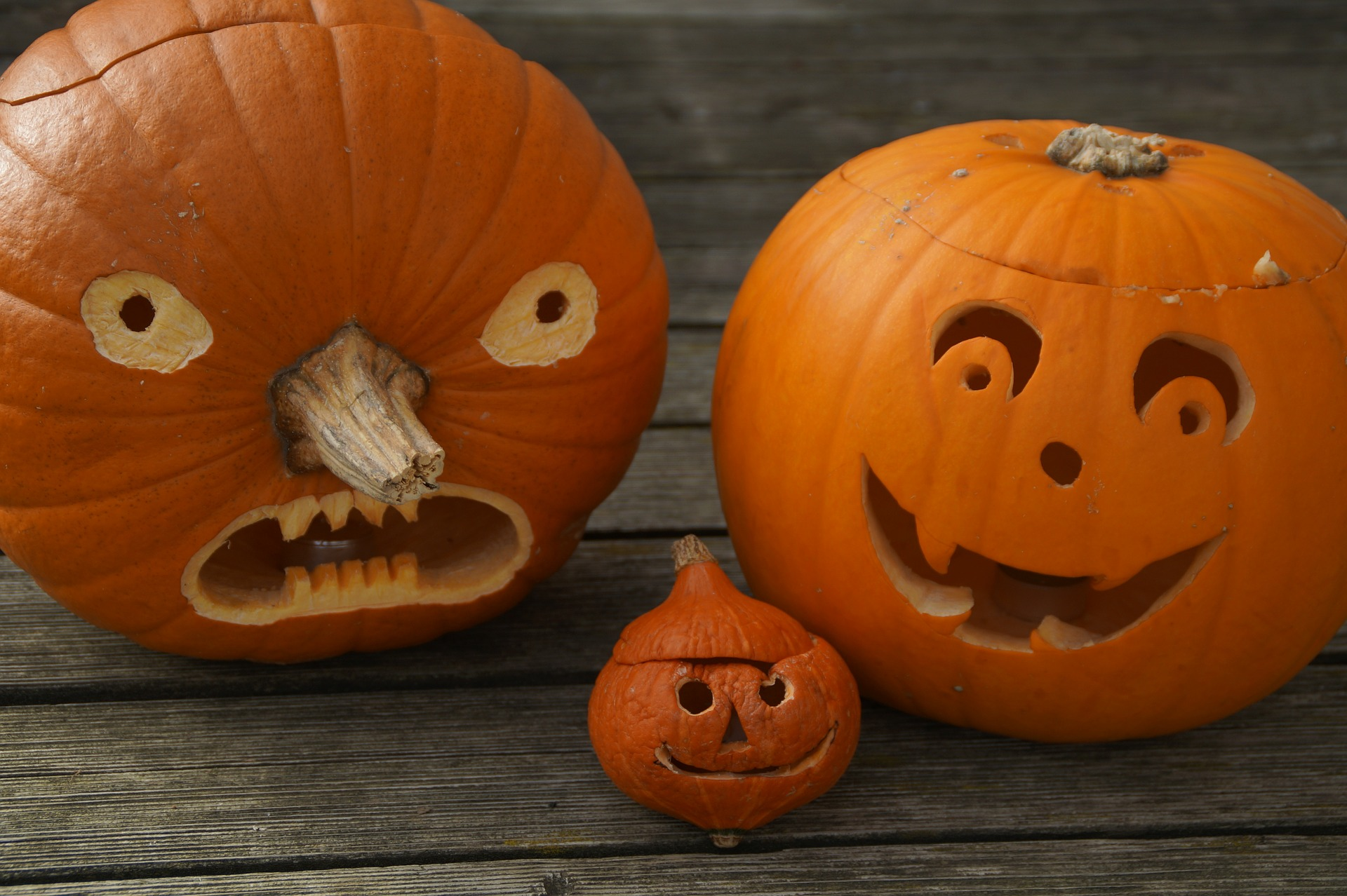 Smash Pumpkin Carving Contest Comes To Champaign