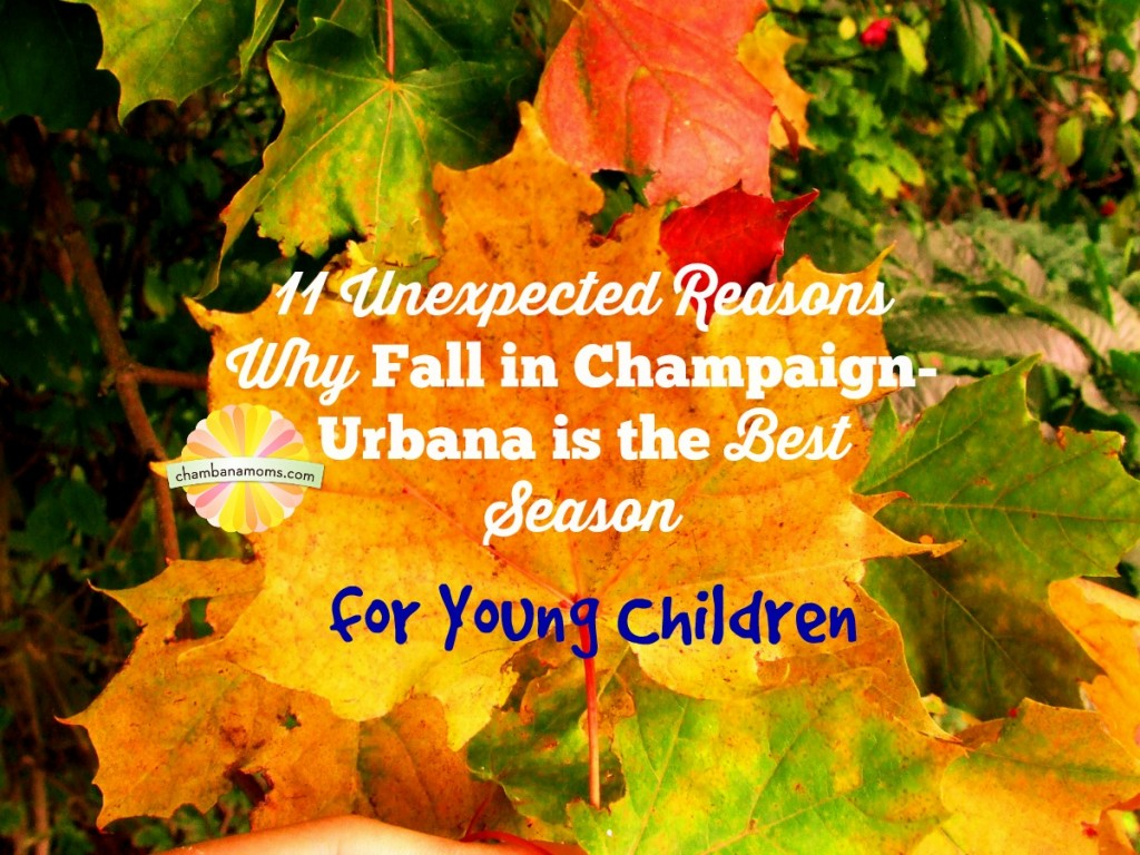 11 Unexpected Reasons Why Fall In Champaign Urbana Is The