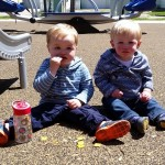 Avoid the Mud and Muck with Mulch-Free Playgrounds in Champaign-Urbana