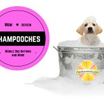 Mom Review: Shampooches Mobile Dog Bathing & More