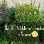 The Children's Garden at the IDEA garden in Champaign Urbana on Chambanamoms.com