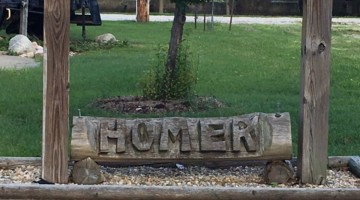 Top Five: Things To Do With Kids in Homer