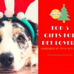 Top 5 Holiday Gifts for Pet Lovers Sponsored by Fetch Pet Care