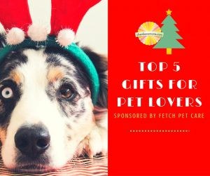 Top 5 Gifts for Pet Lovers (1)