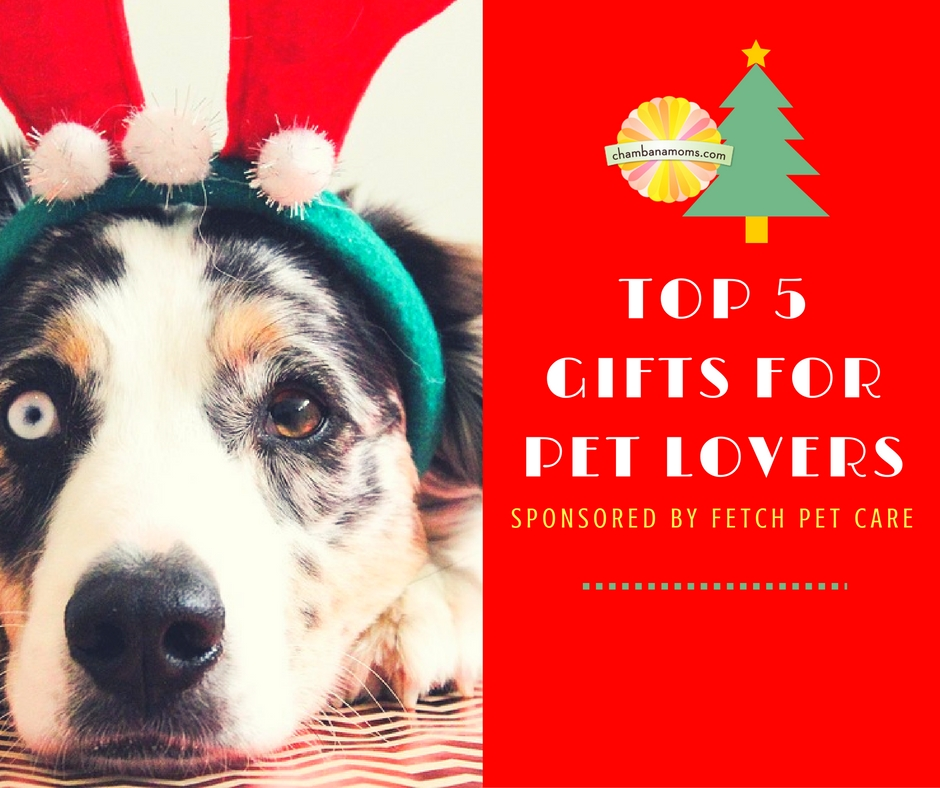 Wedding Gifts For Dog Lovers: Top 5 Holiday Gifts For Pet Lovers Sponsored By Fetch Pet