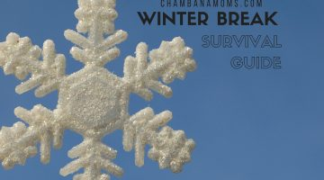 Champaign-Urbana Winter Break Survival Guide Sponsored by Illinois Athletics