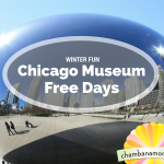 Free Winter Museum Days: Chicago