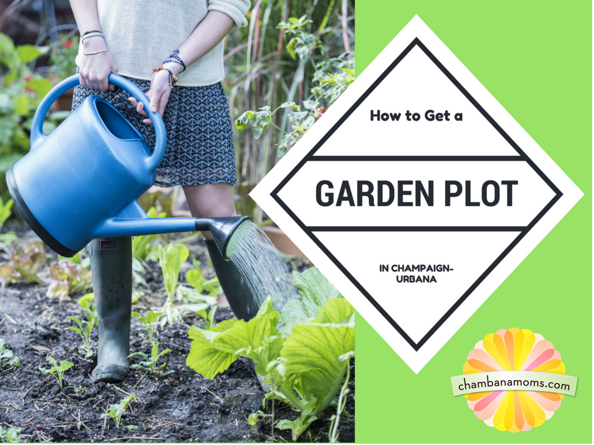 How to Get a Garden Plot in Champaign-Urbana