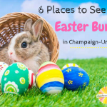6 Places to See the Easter Bunny in Champaign-Urbana