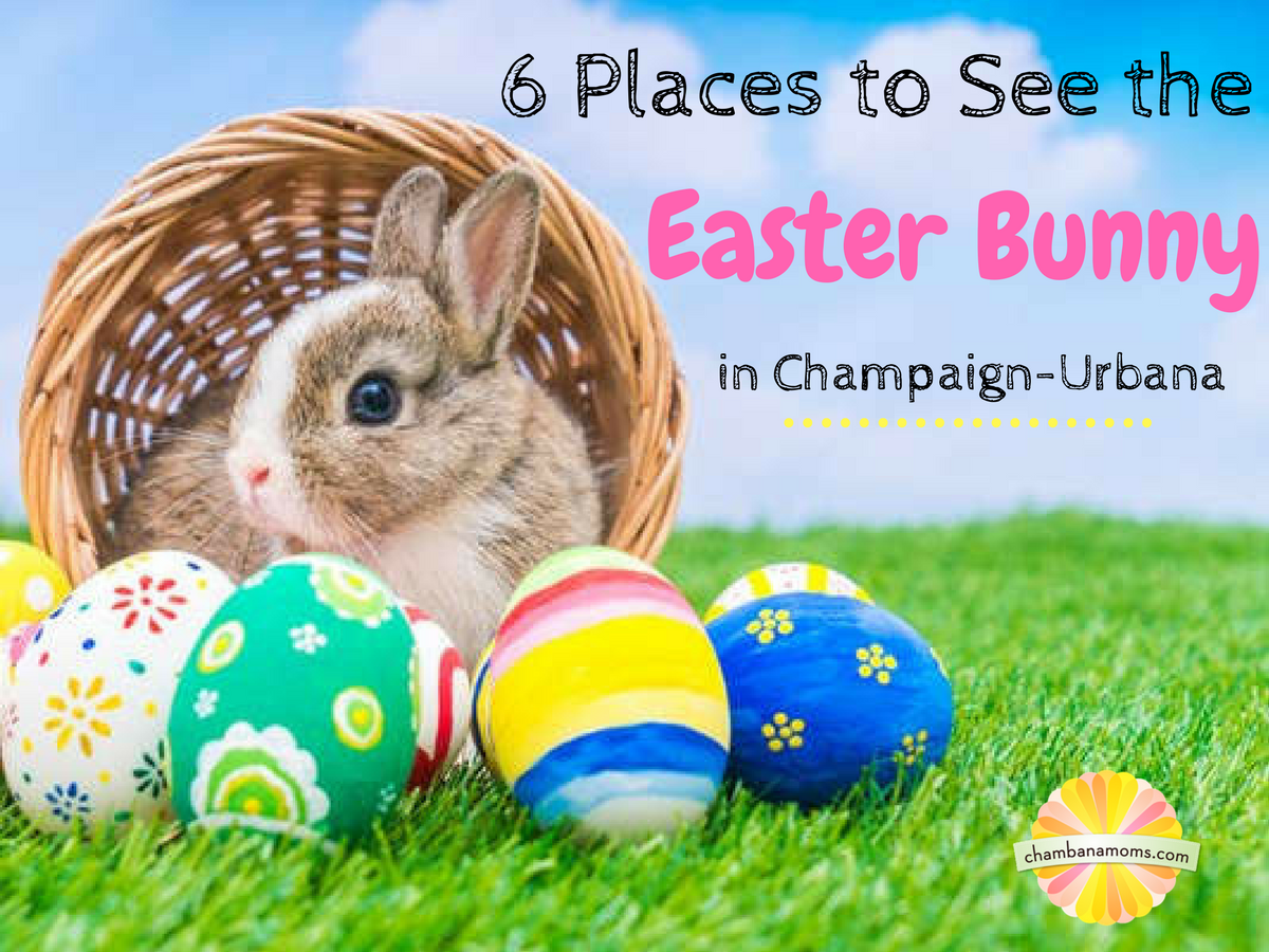 6 places to see the easter bunny in champaign urbana