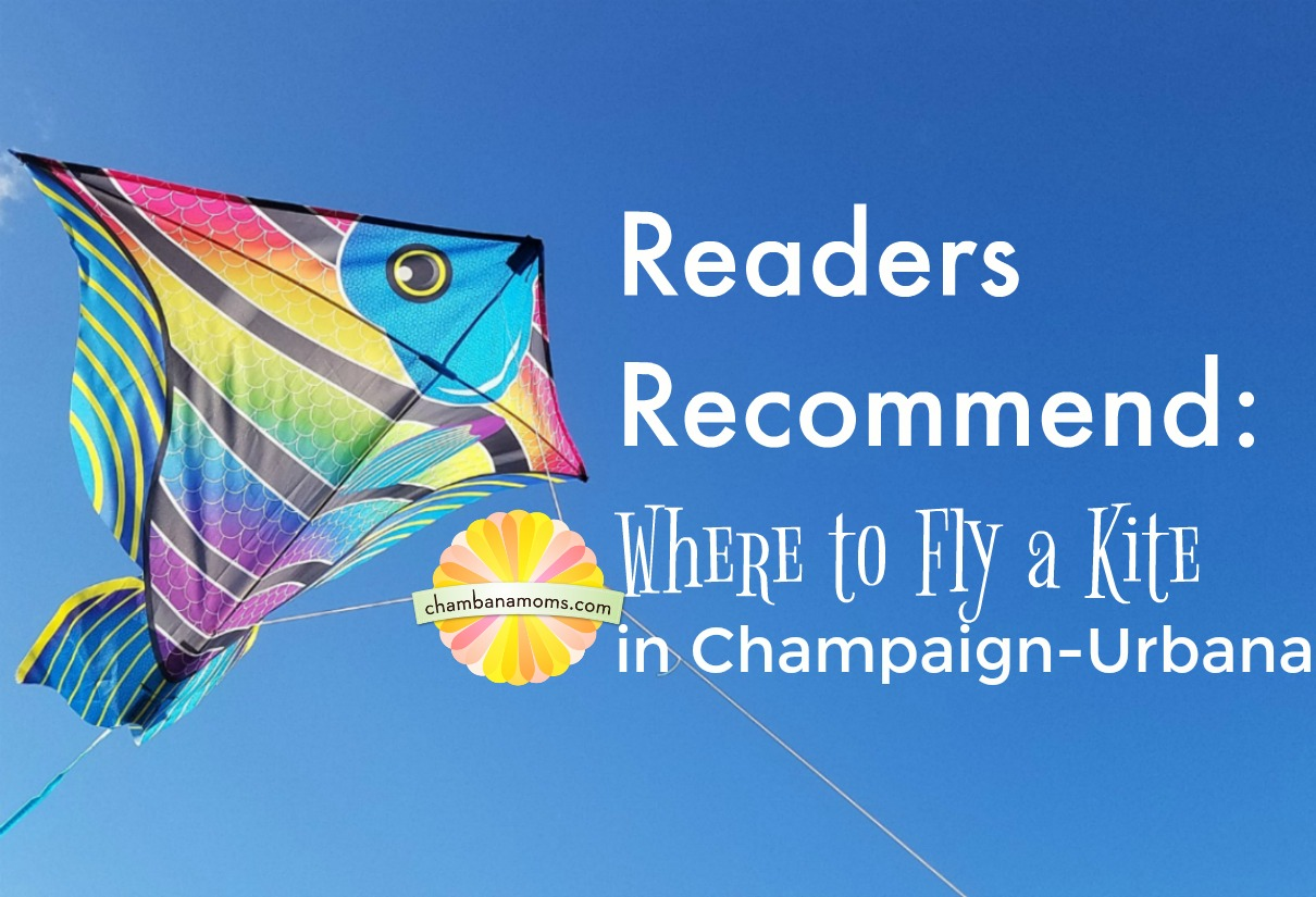 Where to Fly a Kite in Champaign-Urbana on Chambanamoms