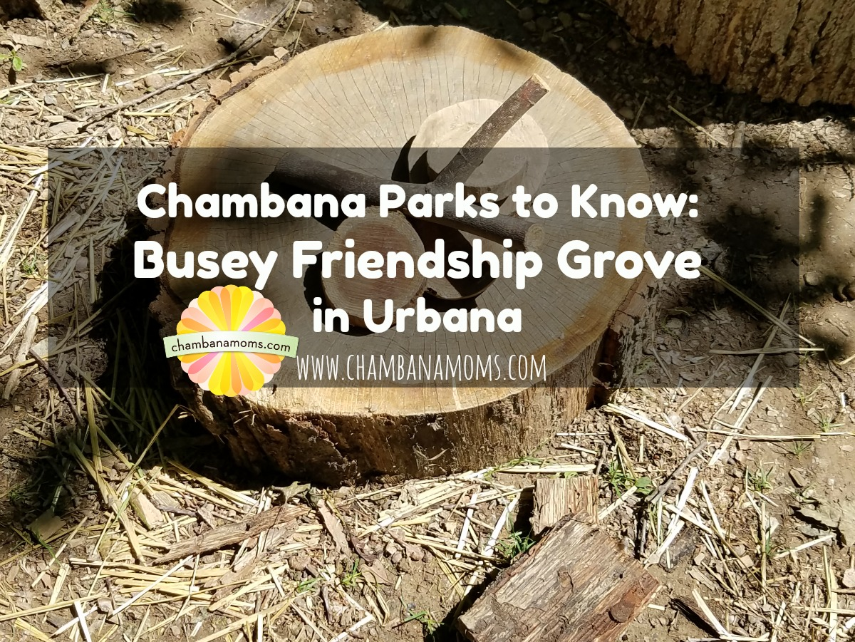 Get to Know Busey Friendship Grove Nature Park in Urbana on Chambanamoms.com