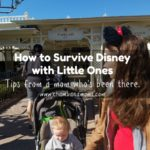 Tips for taking Toddlers and Preschoolers to Disney on Chambanamoms.com