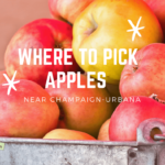 Where to Pick Apples Near Champaign-Urbana