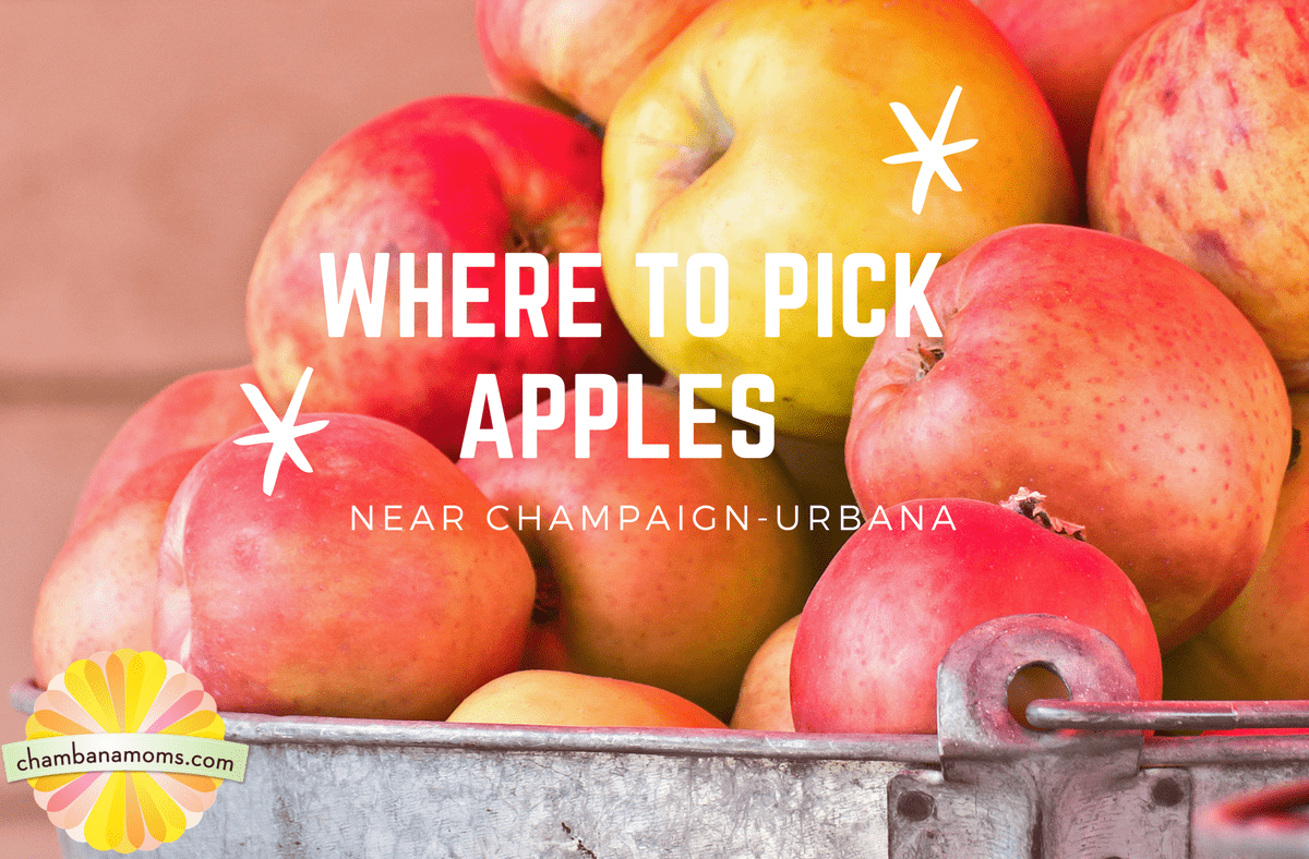 Where to Pick apples near champaign-Urbana