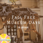 Chicago Museum Free Days: Fall Edition