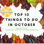 October Top 10 Picks Sponsored by University of Illinois Vet Med Open House
