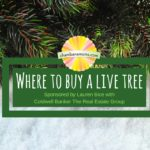Where to buy a live Christmas tree in Champaign Urbana