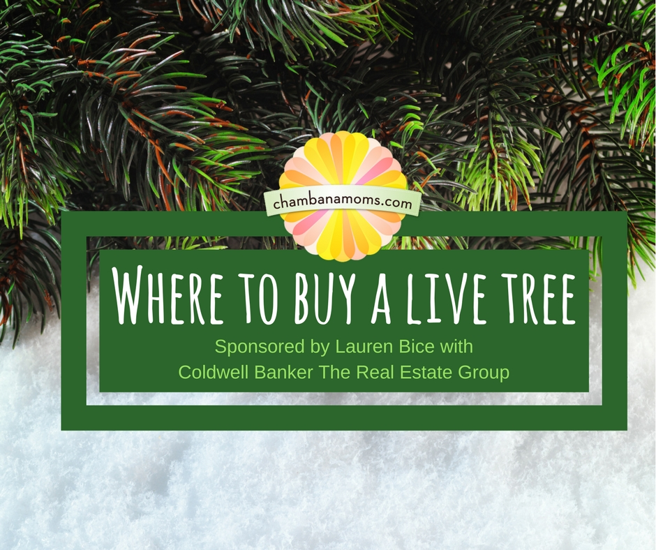 where to buy a live christmas tree in champaign urbana - Buy Christmas Tree