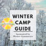 Champaign-Urbana Area Winter Break Camps Sponsored by I-Power Gymnastics