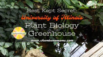 Best Kept Secret: Plant Biology Greenhouse on the University of Illinois Campus in Urbana
