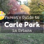 Parent's Guide to Carle Park in Urbana