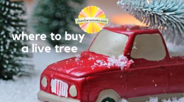 Christmas Tree Farms Champaign