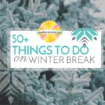50+ Things to do on Winter Break Champaign Urbana