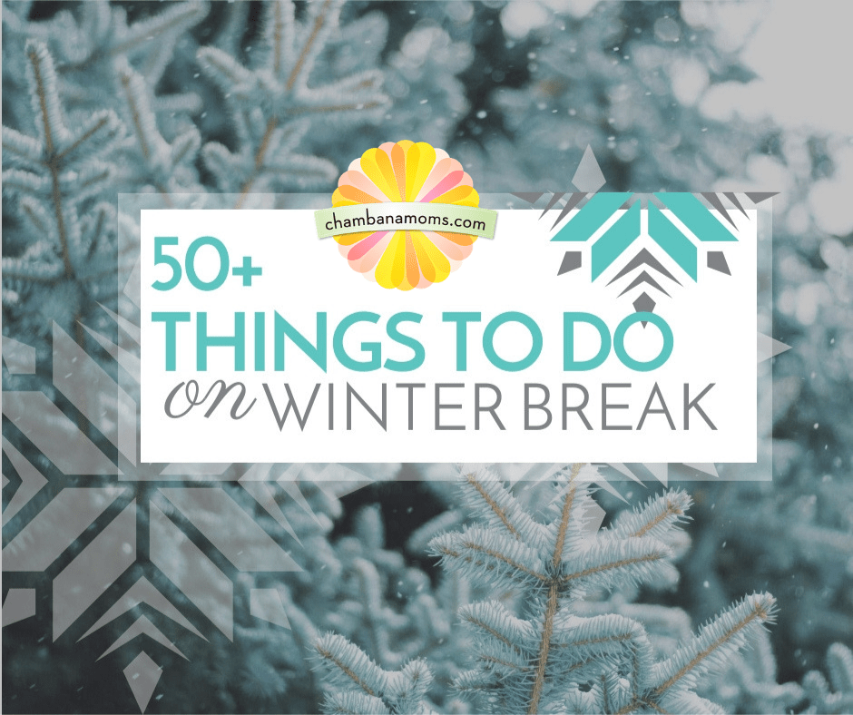 50+ Things to do on Winter Break Champaign Urbana