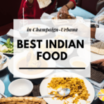 Best Indian Food Champaign Urbana