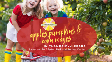 apples pumpkins & corn mazes in champaign-urbana