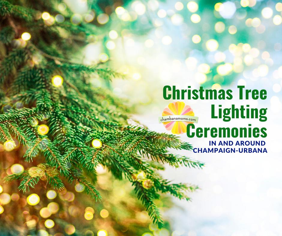 Christmas Tree Lighting Ceremonies in Champaign-Urbana