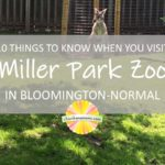 10 Things TO Know When You Visit Miller Park Zoo