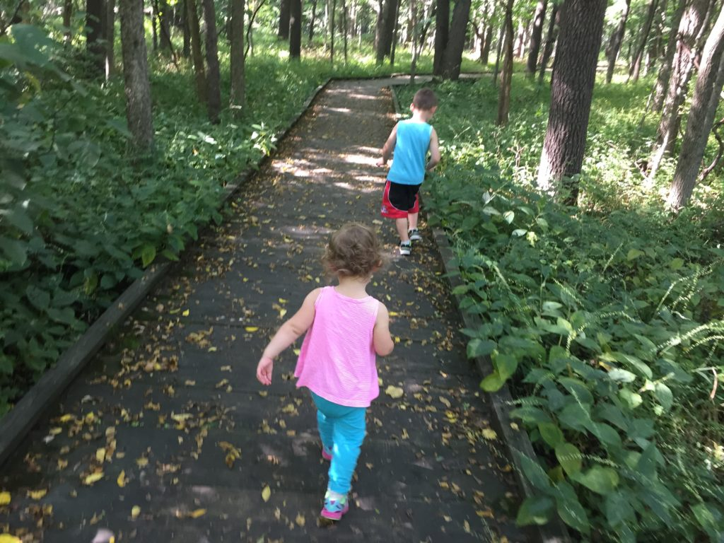 Busey Woods paved trail