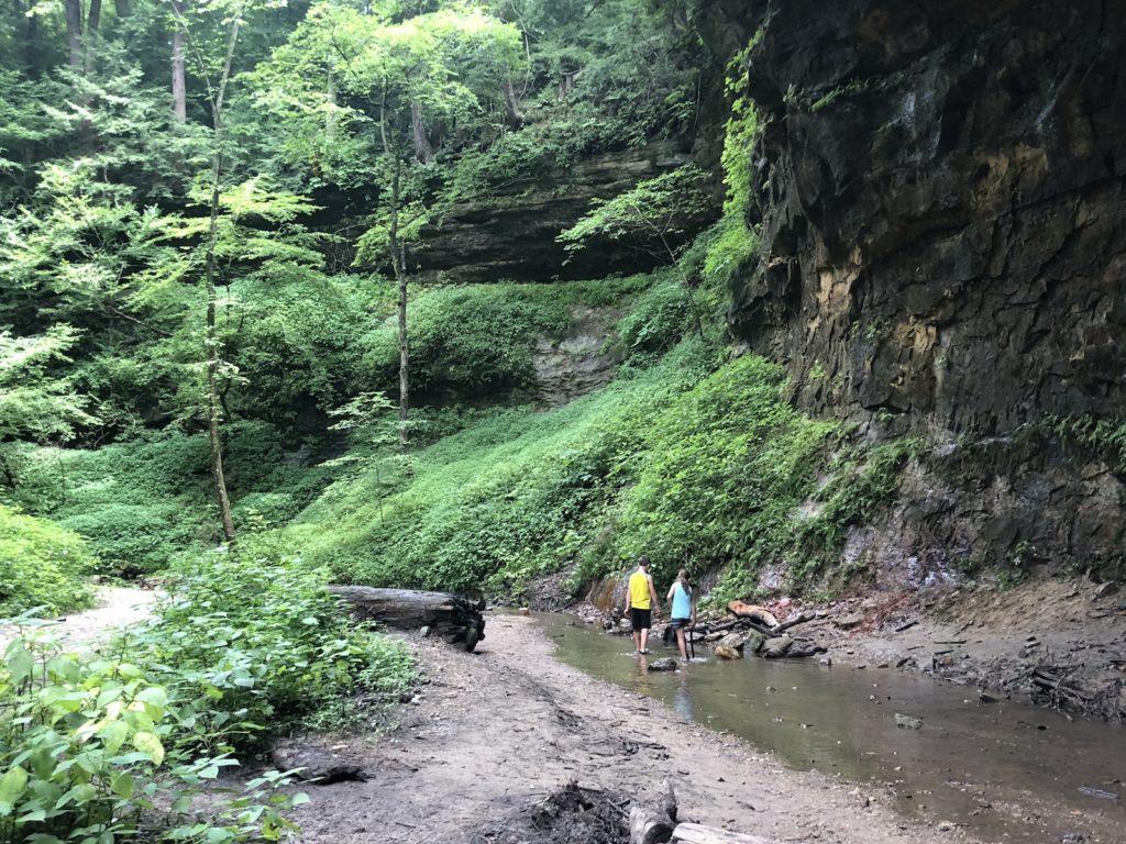 Trail 3 at Turkey Run