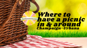 Where to Have a Picnic In and Around Champaign-Urbana