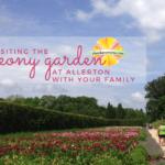 Peony Garden at Allerton Park