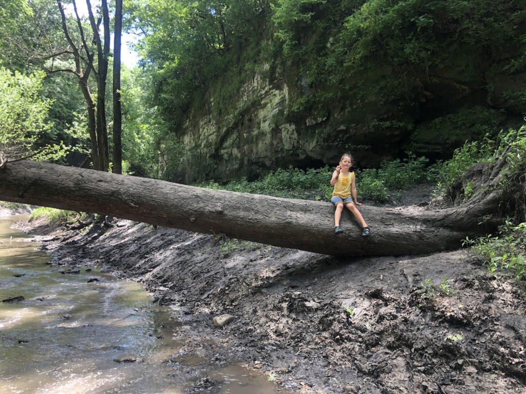 climb a log at matthiesen